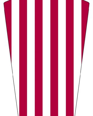 Velox Parafango America